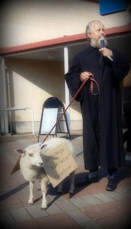 arto-ja-lammas