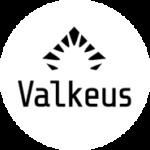 Viikon suomalainen yrittäjä - Henrik Söderlund, Valkeus Oy