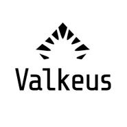 Viikon suomalainen yrittäjä – Henrik Söderlund, Valkeus Oy